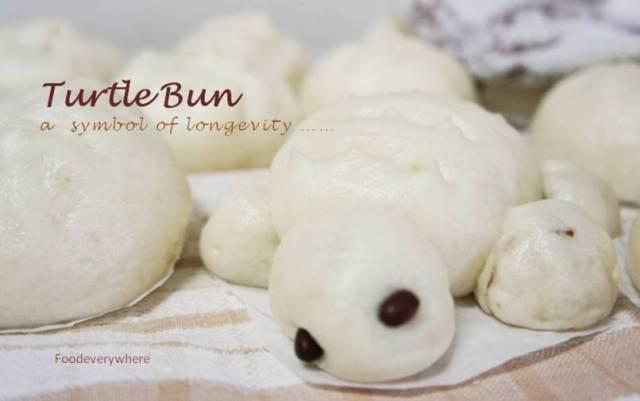 turtle bun